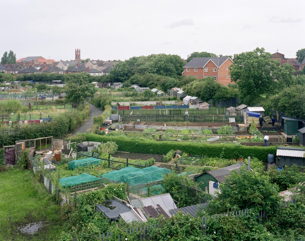 Whitehouse Allotments, Middlesbrough, North Yorkshire, 11th August 2008